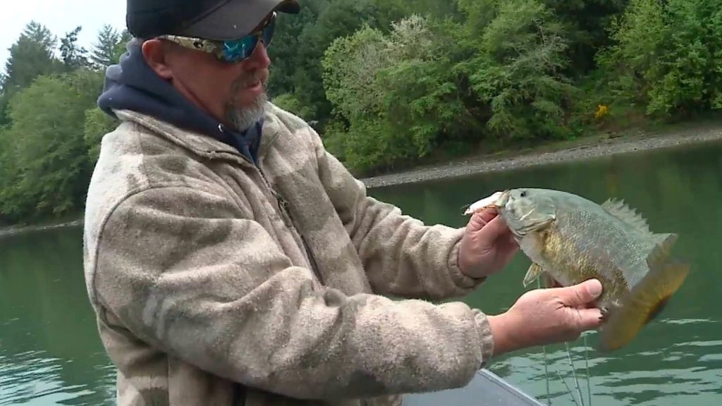 Umpqua River Smallmouth Bass
